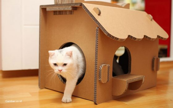 25 genius, cute, and ludicrous cardboard cat houses to inspire you! DIY Tricks
